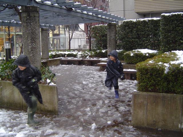 雪合戦で遊ぶ子供達