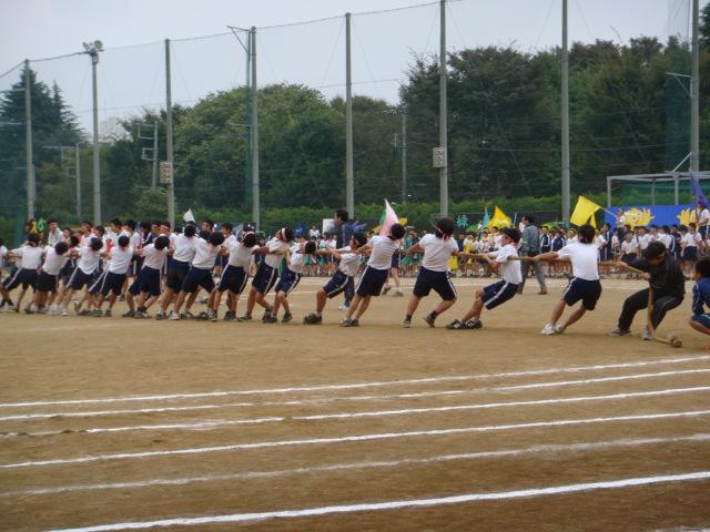 中学校の体育祭にて綱引き