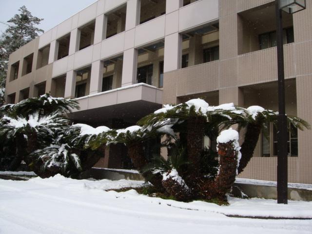 長崎の雪化粧